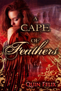Custom Book Cover Quin Felix Cape of Feathers